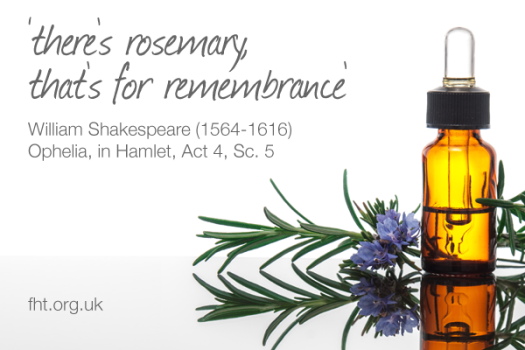 theres-rosemary-thats-for-rememberance-william-shakespeare
