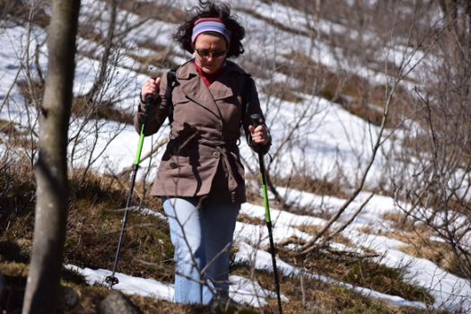 Nordic walking_Pixabay.jpg